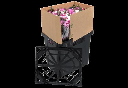 Procona Blumen Behälter