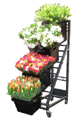 Pico display bloemen